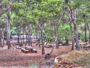 Zona recreativa de la Magdalena en Castellón