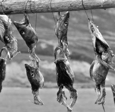 La salazón en los pescados