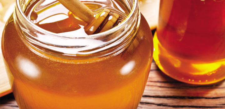 La Miel, el secreto de las colmenas